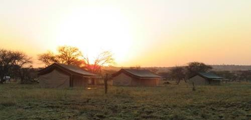 Nyati Migration Camp serengeti