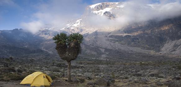 Kilimanjaro tält