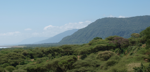Safari till Lake Manyara
