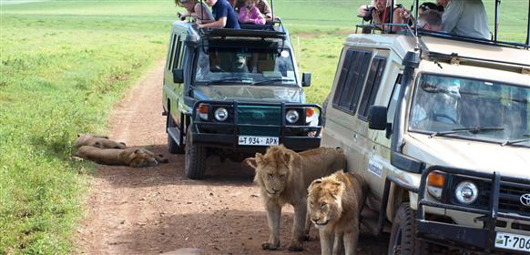 Vanliga frågor om Ngorongorokratern