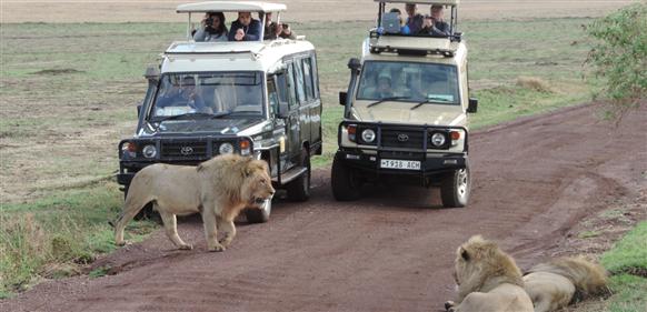 Safari till Ngorongorokratern